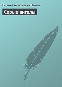 Евгений Нечаев -Серые ангелы