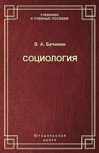 Владислав Бачинин -Социология