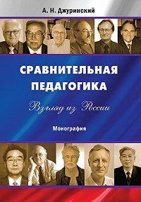 Александр Джуринский - Сравнительная педагогика. Взгляд из России
