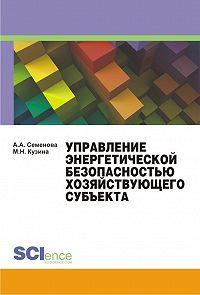 Алла Семенова -Управление энергетической безопасностью хозяйствующего субъекта. Учебно-методическое пособие