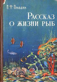 Иван Правдин - Рассказ о жизни рыб