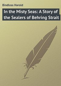 Harold Bindloss -In the Misty Seas: A Story of the Sealers of Behring Strait
