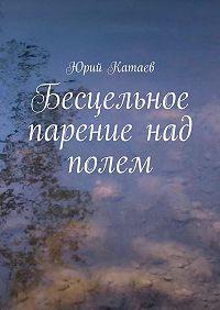 Юрий Катаев -Бесцельное парение над полем
