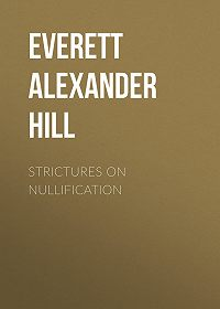 Alexander Everett -Strictures on Nullification