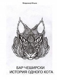 Владимир Ильин -Бар Чеширски. История одногокота