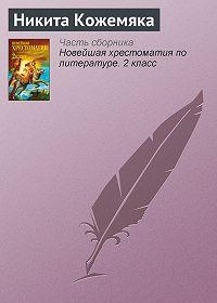 Неустановленный автор -Никита Кожемяка