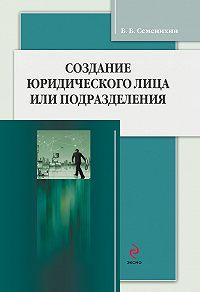Виталий Викторович Семенихин - Создание юридического лица или подразделения