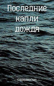 Степан Бердинских -Последние капли дождя