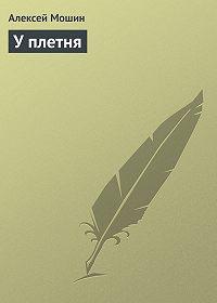 Алексей Мошин - У плетня