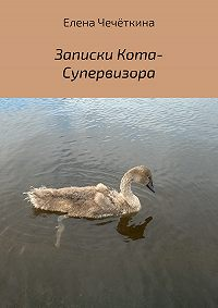 Елена Александровна Чечёткина -Записки Кота-Супервизора