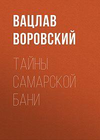 Вацлав Воровский -Тайны самарской бани