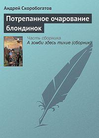 Андрей Скоробогатов - Потрепанное очарование блондинок