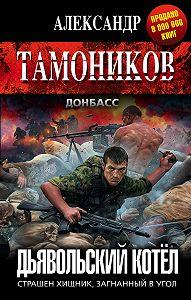 Александр Александрович Тамоников -Дьявольский котёл