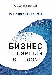 Сергей Щербаков - Бизнес, попавший в шторм. Как победить кризис