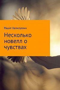 Рашит Халилуллин -Несколько новелл о чувствах