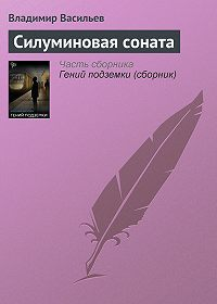 Владимир Васильев -Силуминовая соната