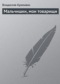 Владислав Крапивин - Мальчишки, мои товарищи