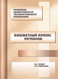 В. А. Ильин -Проблемы эффективности государственного управления. Бюджетный кризис регионов