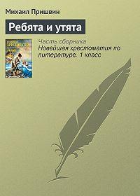 Михаил Пришвин -Ребята и утята