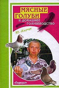 Юрий Харчук -Мясные голуби и домашнее голубеводство