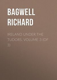 Richard Bagwell -Ireland under the Tudors. Volume 3 (of 3)