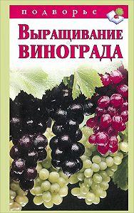 Виктор Горбунов -Выращивание винограда