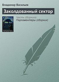Владимир Васильев - Заколдованный сектор