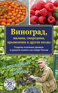 Виктор Жвакин -Виноград, малина, смородина, крыжовник и другие ягоды