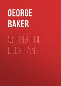 George Baker -Seeing the Elephant