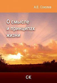 Алексей Соколов - О смысле и принципах жизни