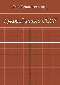 Яков Радомысльский - Государство ивласть