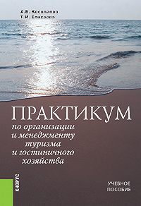Татьяна Ивановна Елисеева -Практикум по организации и менеджменту туризма и гостиничного хозяйства