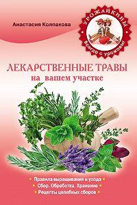 Анастасия Колпакова - Лекарственные травы вашем на участке
