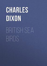 Charles Dixon -British Sea Birds