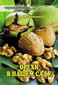 Андрей Марченко - Орехи в нашем саду