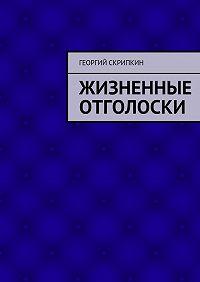 Георгий Скрипкин -Жизненные отголоски