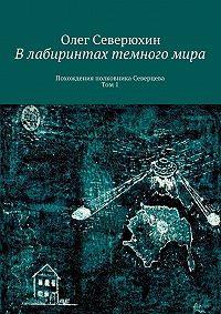 Олег Васильевич Северюхин -Влабиринтах темногомира. Похождения полковника Северцева. Том1