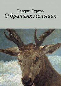 Валерий Гурков -Обратьях меньших