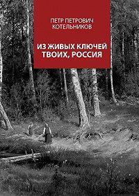 Петр Котельников -Из живых ключей твоих, Россия