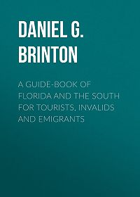 Daniel G. (Daniel Garrison) Brinton -A Guide-Book of Florida and the South for Tourists, Invalids and Emigrants