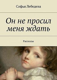 Софья Лебедева -Он не просил меня ждать. Рассказы