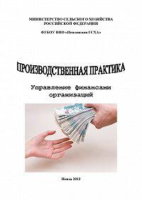 Ольга Тагирова -Производственная практика. Управление финансами организаций
