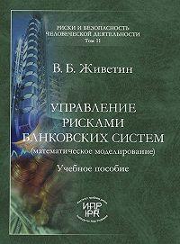 Владимир Живетин - Управление рисками банковских систем (математическое моделирование)