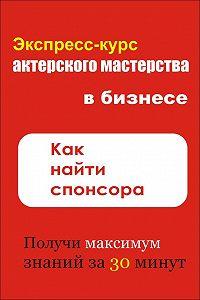 Илья Мельников -Как найти спонсора