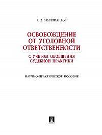 Александр Бриллиантов -Освобождение от уголовной ответственности с учетом общей судебной практики