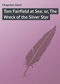 Allen Chapman -Tom Fairfield at Sea: or, The Wreck of the Silver Star