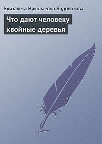 Елизавета Водовозова -Что дают человеку хвойные деревья