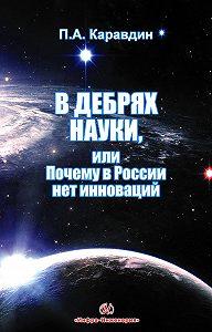 Павел Каравдин -В дебрях науки, или Почему в России нет инноваций