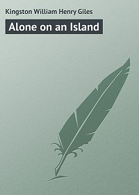 William Kingston -Alone on an Island