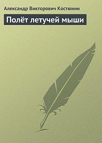 Александр Костюнин - Полёт летучей мыши